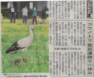 静岡新聞本文